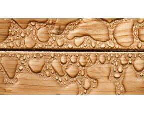 GNATURE Масло для фасадов 285 Fassadenöl