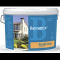 Akrylik Extra Bayramix/Акрилик Экстра Байрамикс Акриловая краска