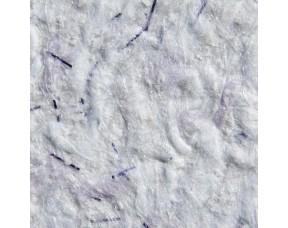 Жидкие обои Silkcoat Elegant Aspendos-11